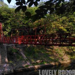 The broken heart bridge Bogor