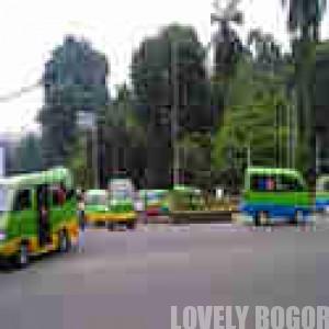 Bogor's angkot (public transportation)
