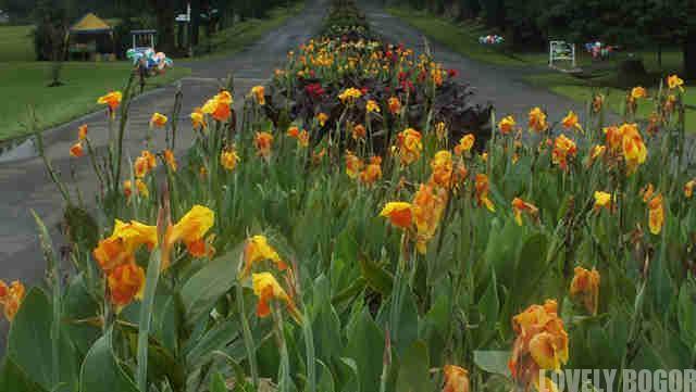 Kana Hias alias Bunga Tasbih