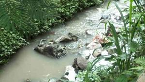 Saluran air di Bogor