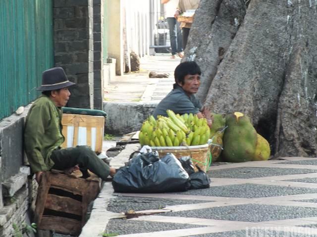 Pedagang Pisang atau Cau