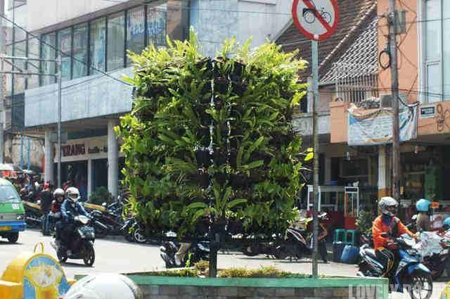 Taman Vertikal di Jembatan Merah Bogor