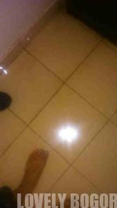 Banjir Bogor