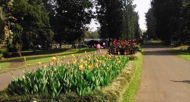 The Astrid Park in bogor