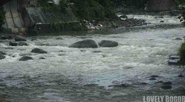 Ciliwung River in Bogor Botanical Gardens
