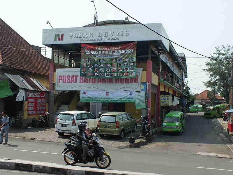 Gemstone Seller in Bogor