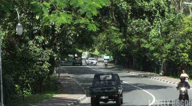 Jalan Jalak Harupat Menuju Istana Bogor