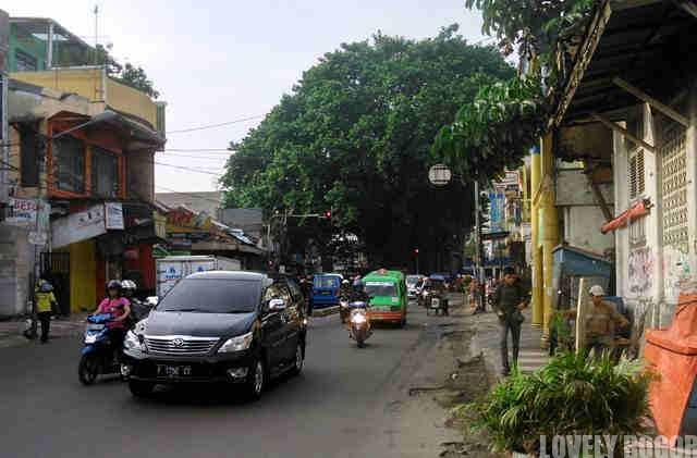 Kawasan Empang Di Bogor