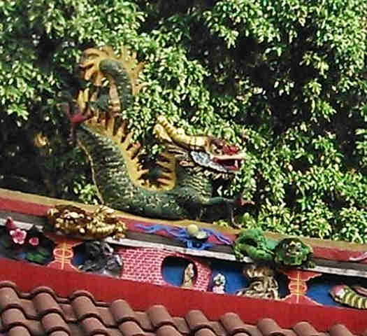 The Dragons in Bogor