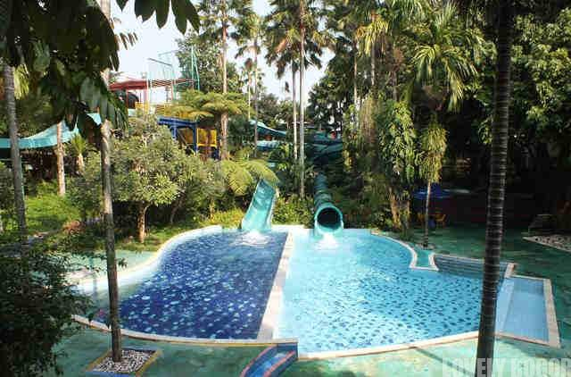 The Jungle Water Adventure