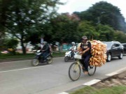 Peddler On Bike