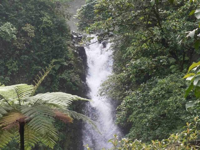 Menulis Artikel Wisata Bogor Itu Menguntungkan
