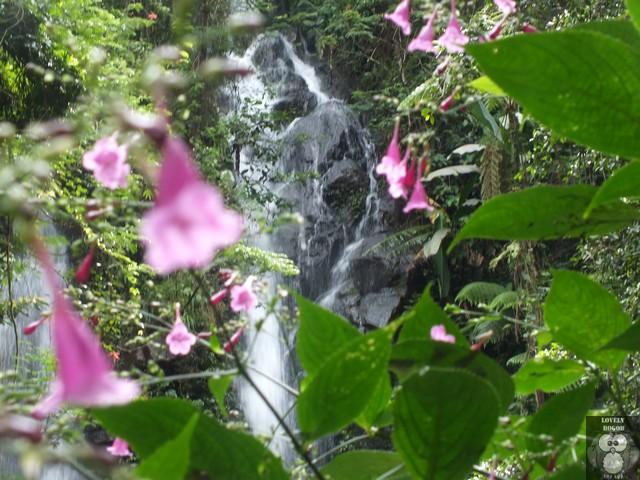 Cueug Cilember Tempat wisata favorit Bogor