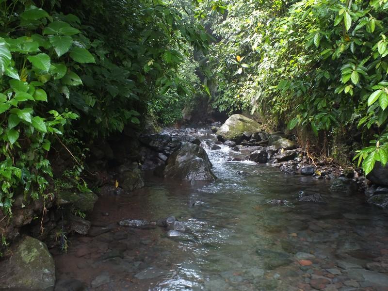 Aliran Sungai Di Curug Nangka