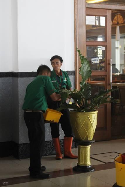 Membersihkan Daun Tanaman Hias di Stasiun Bogor 3