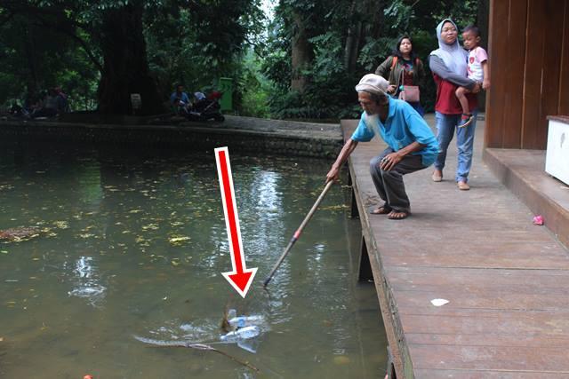 Kakek Petugas Kebersihan di Kebun Raya Bogor 6