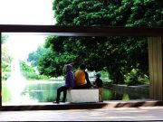 Large Frame in Bogor Botanical Garden - How To Use It