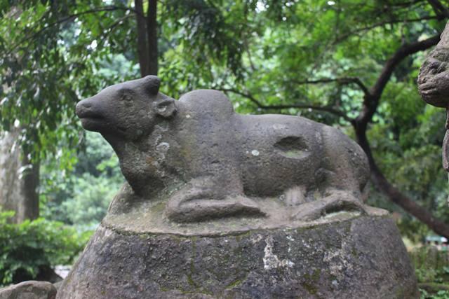 Nandi Bull statue in Bogo Botanical Garden