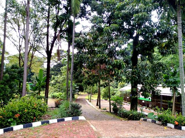 Melongok Taman Sains dan Teknologi Pertanian b