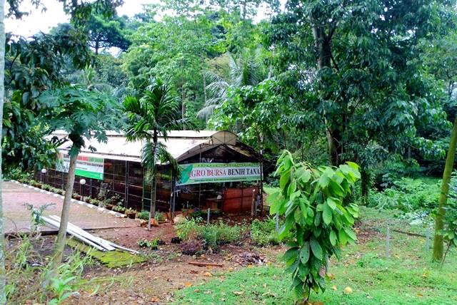Melongok Taman Sains Dan Teknologi Pertanian C Lovely Bogor