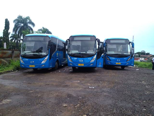 Info Damri Cibinong - Bandara Soekarno Hatta [Soetta]