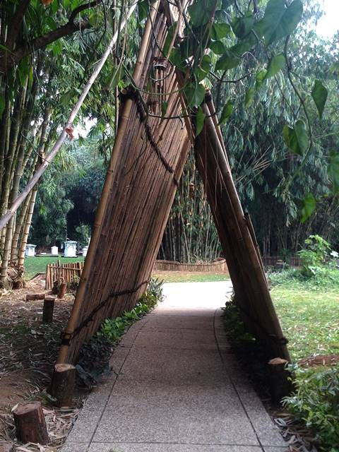 Gerbang Bambu Untuk Koleksi Bambu - Kebun Raya Bogor 2