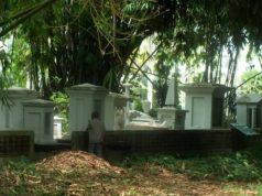 Gerbang Bambu Untuk Koleksi Bambu - Kebun Raya Bogor