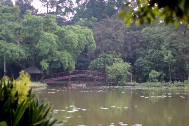 Kapan Sebenarnya Jam Buka Kebun Raya Bogor - Bisakah Masuk Lebih Awal A