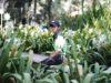 Seragam Baru Park Rangers, Sang Penjaga Taman Kota Bogor