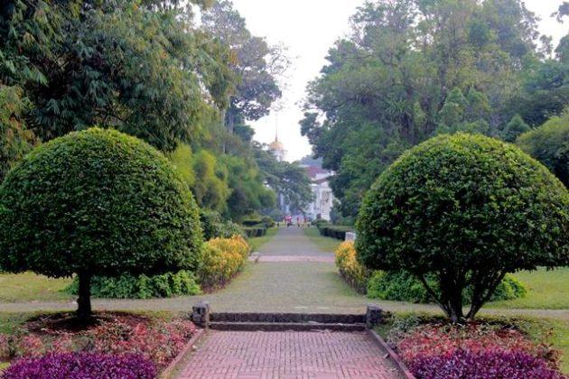 Taman Teijsmann Yang Menyejukkan Dari Berbagai Sudut N