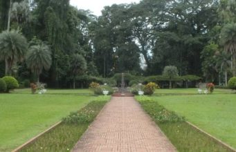 The Entrance Fee of Bogor Botanical Gardens 2
