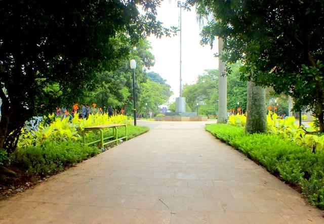 payung pohon spot foto di taman kencana bogor A