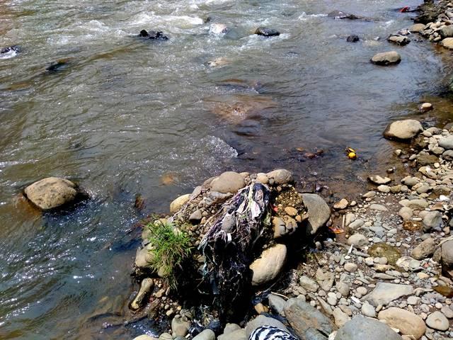 Tumpukan Sampah Di Sungai Ciliwung Ini Hanya Sebagian Kecil Saja B