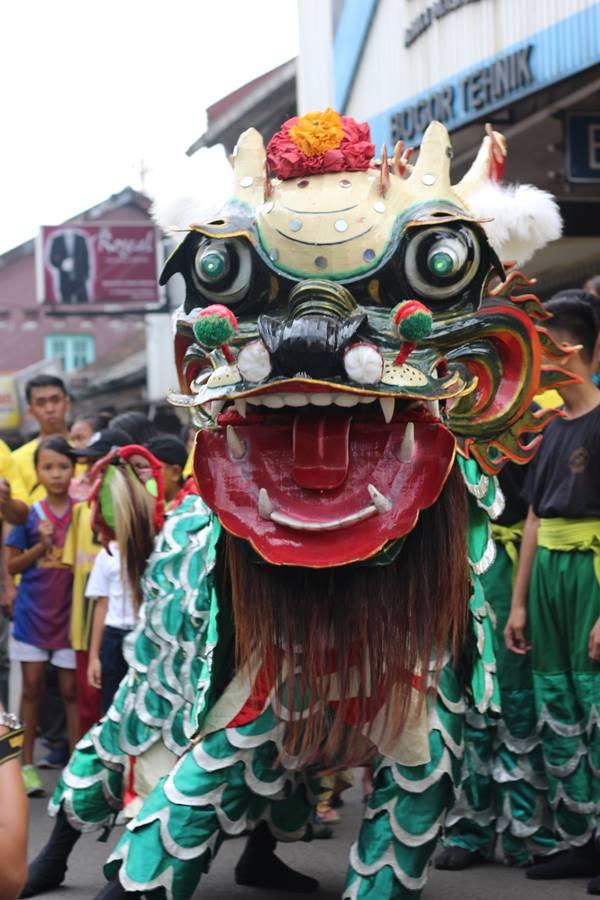spesies barongsai baru ditemukan di Bogor (2)