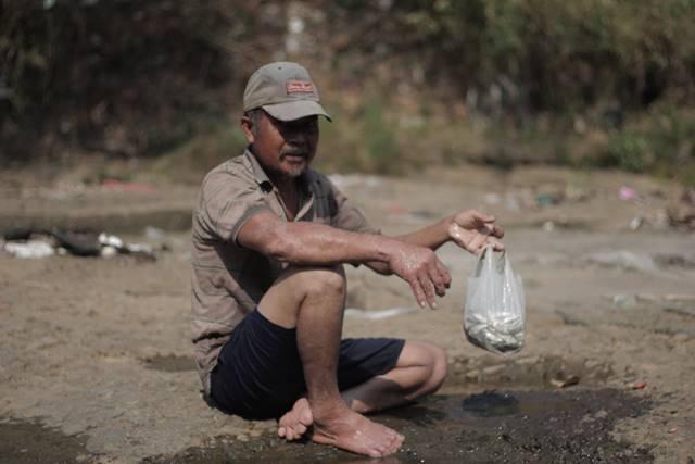 sang bapak penjala ikan gehed spesies asli kali ciliwung