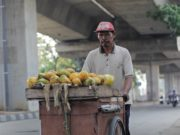 Papaya Seller On The Street