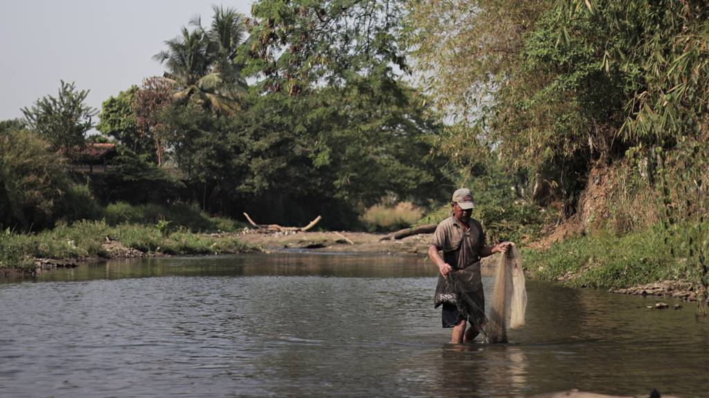 The Fish Catcher On Ciliwung River